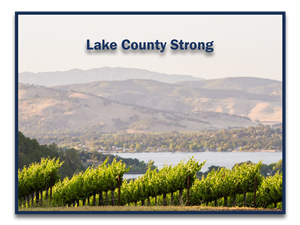 A view of Clear Lake with vineyards in the foreground